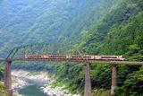 大歩危峡を行く「アンパンマン列車」