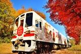 スカーレット列車2