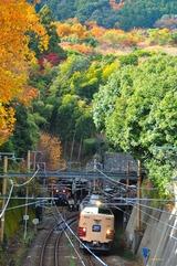 紅葉の小倉山と183系