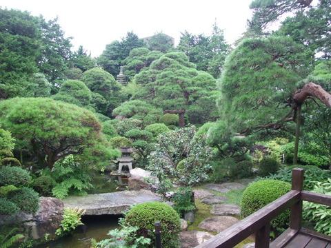 会長の家の庭