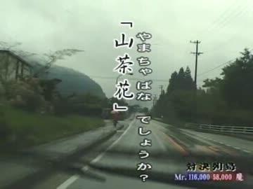 山茶花(やまちゃばな)
