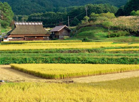【閲覧注意】日本で一番えげつない事件をご覧ください