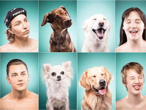 犬 激似 似てる そっくり 4選