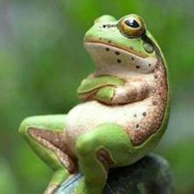 変な告白 カエル 心がピョンピョン