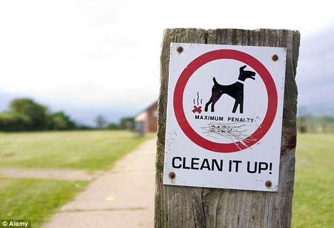 道に捨てられたイヌのウンコをDNA解析