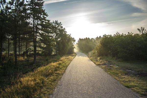 bike-path-189174_1920