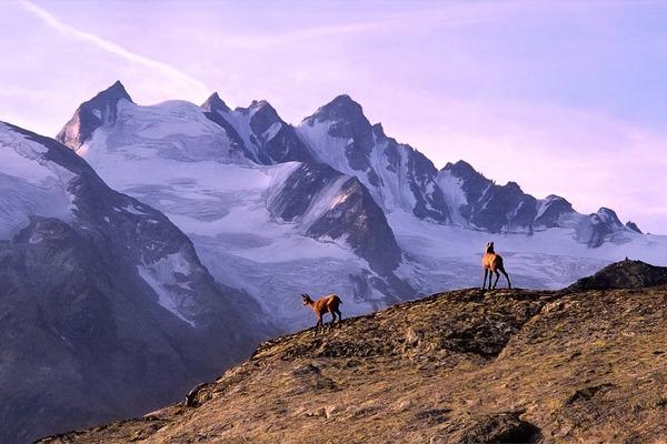 mountain-5624148_1920