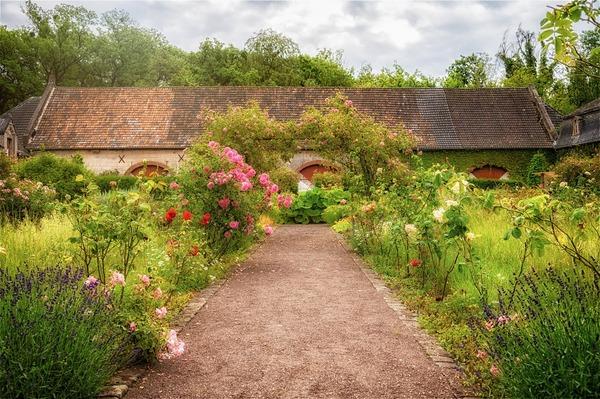 garden-5385995_1920