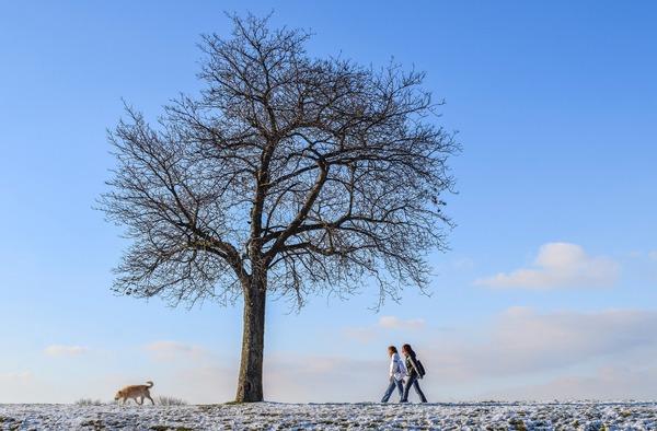 winter-6024017_1920