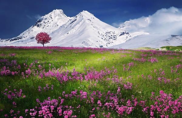 mountains-736886_1280