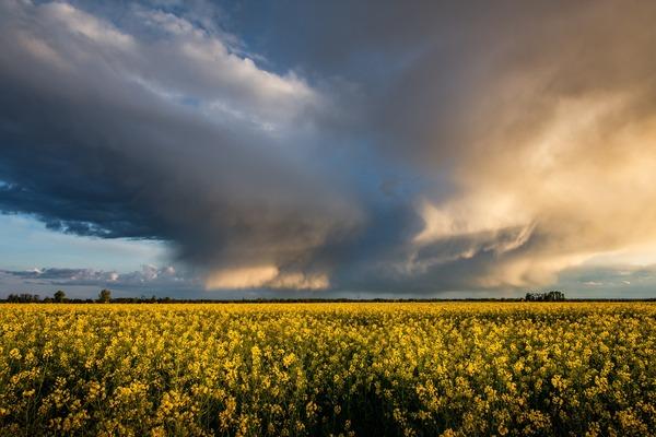 thunderstorm-4220199_1920
