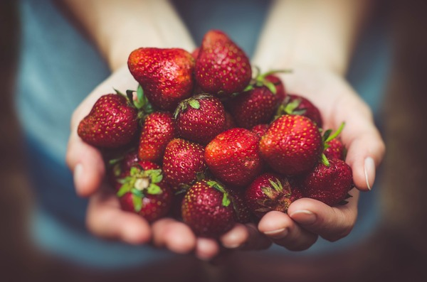 strawberries-1835934_1920