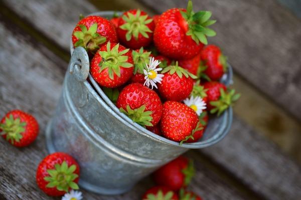 strawberries-3431122_1920 (1)