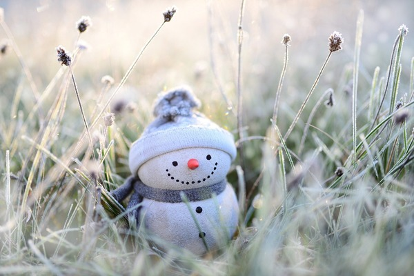 snowman-4674856_1920