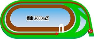 東京芝2000m