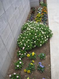 Horlicks Garden