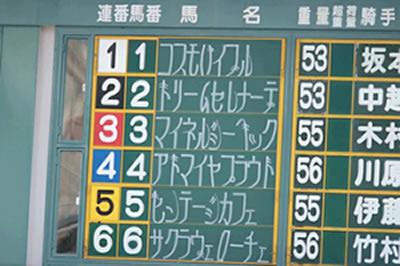 競馬 姫路 姫路競馬の再開時期決定!