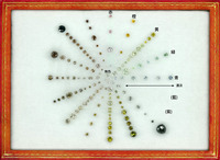国立科学博物館カラーダイヤモンド標本色相明暗度付