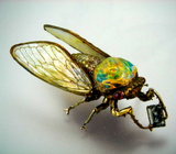 Fire Opal Cicada by Wallace Chan
