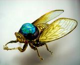 Black Opal Cicada by Wallace Chan