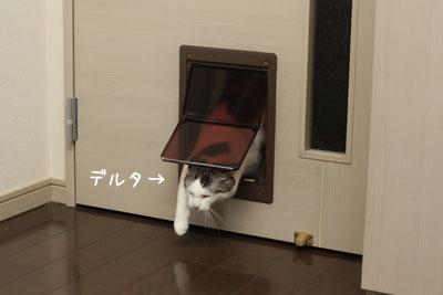 不思議な扉1