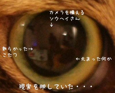 瞳の中の世界3