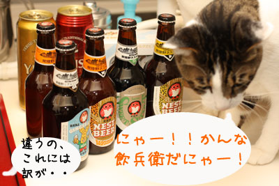 HITACHINO NEST BEER 2