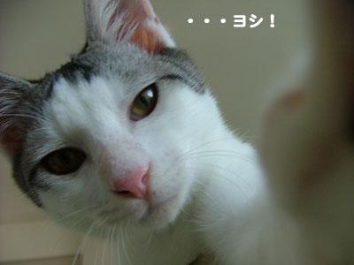 カメラさん3