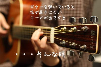 ギター猫1