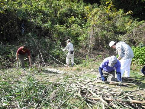11月15日 森林づくり活動