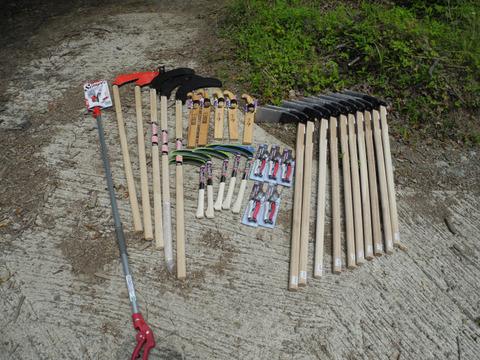 森林づくり活動 プロジェクト