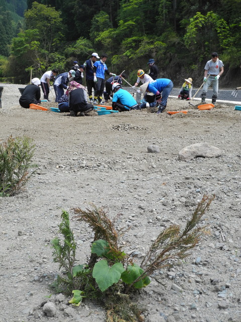 5月24日(土) ボランティア活動