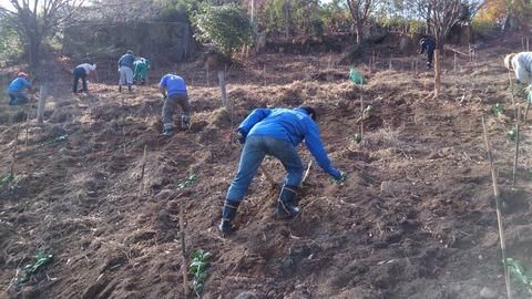 11月22日、23日 森林づくり活動報告