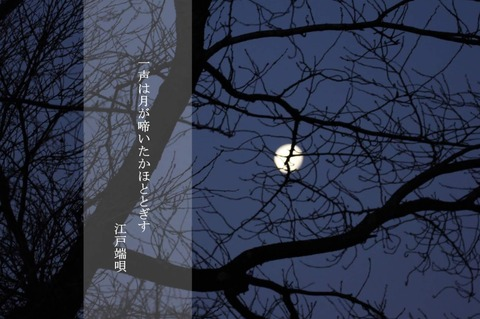 月が啼いたかホトトギス 2-2