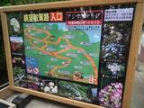 鎌倉 長谷寺 眺望散策路入口 アジサイマップ