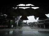 出雲大社 神楽殿の内側より