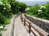 龍飛岬 階段国道