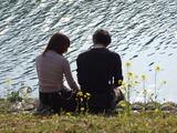 日野菜の花畑 青野川の畔でのんびりと・・・