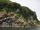 ハチの巣岩