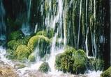 軽井沢 白糸の滝�