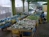 道の駅 みしょうMIC 野菜市場