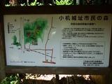 小机城址市民の森 案内図