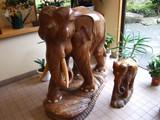 紅椿の湯 玄関に象?
