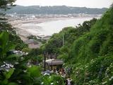 成就院 紫陽花と由比ヶ浜