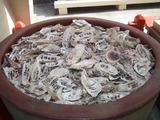 貝殻祈願 奉納された貝殻