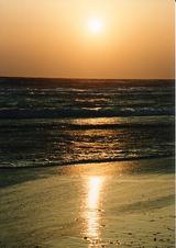 浜岡砂丘の夕日�