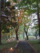 旭日丘湖畔緑地公園
