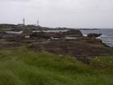 野島埼灯台の遠景