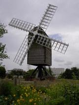 ローズマリー公園 風車