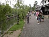 倉敷美観地区 倉敷川畔の柳並木